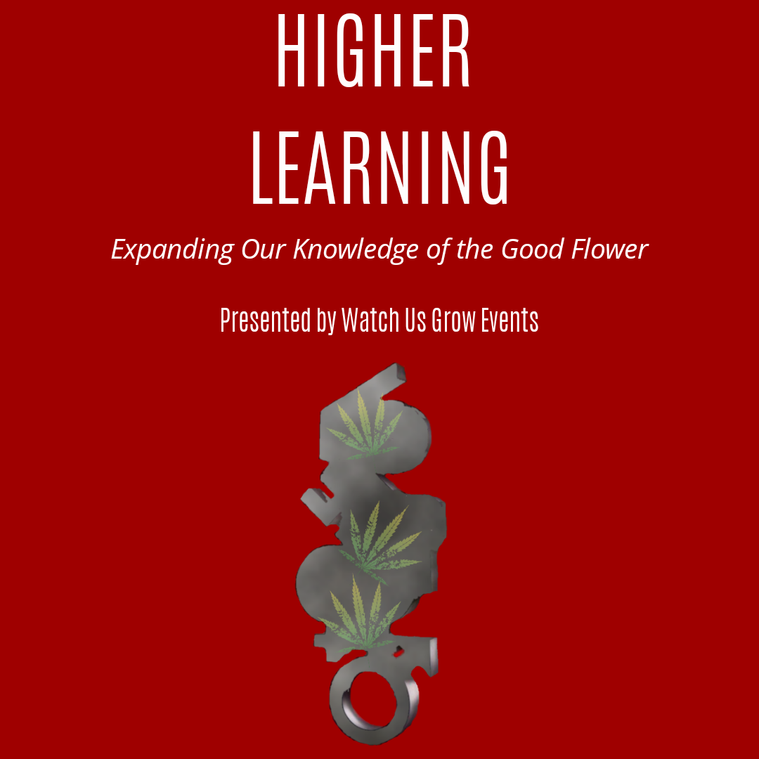 Higher Learning: Expanding Our Knowledge of the Good Flower (Part 1)