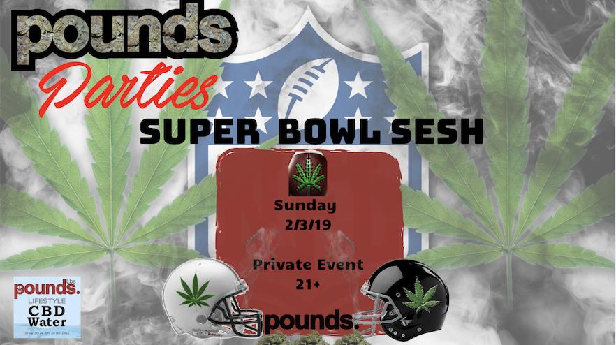 Super Bowl Sesh