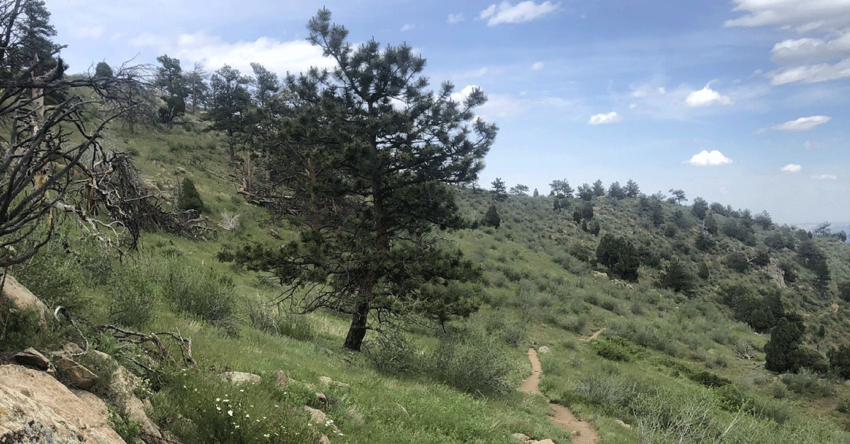 CannaVenture® Hike - CO - May 2020