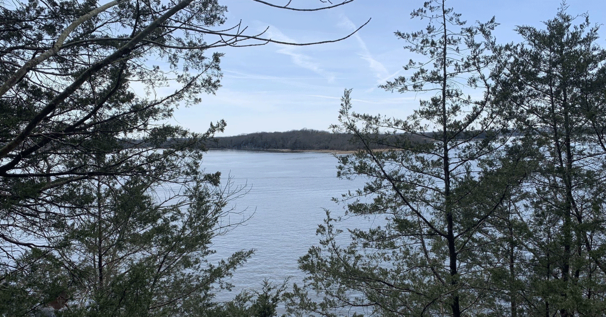 CannaVenture® Hike - TN - March 2020