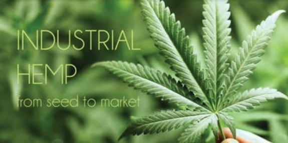 Industrial Hemp Alliance: Hemp Expo & Panel Discussions