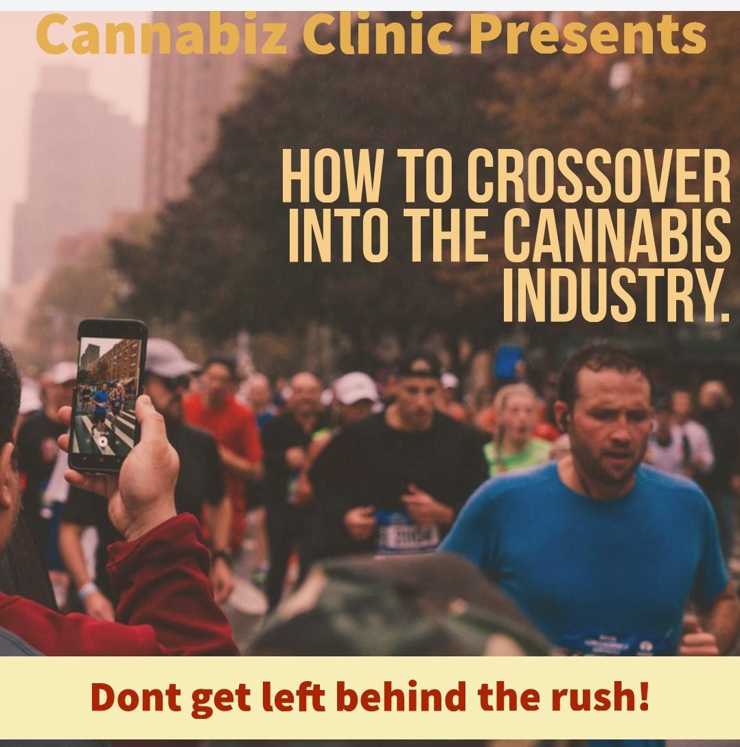 Cannabiz Clinic