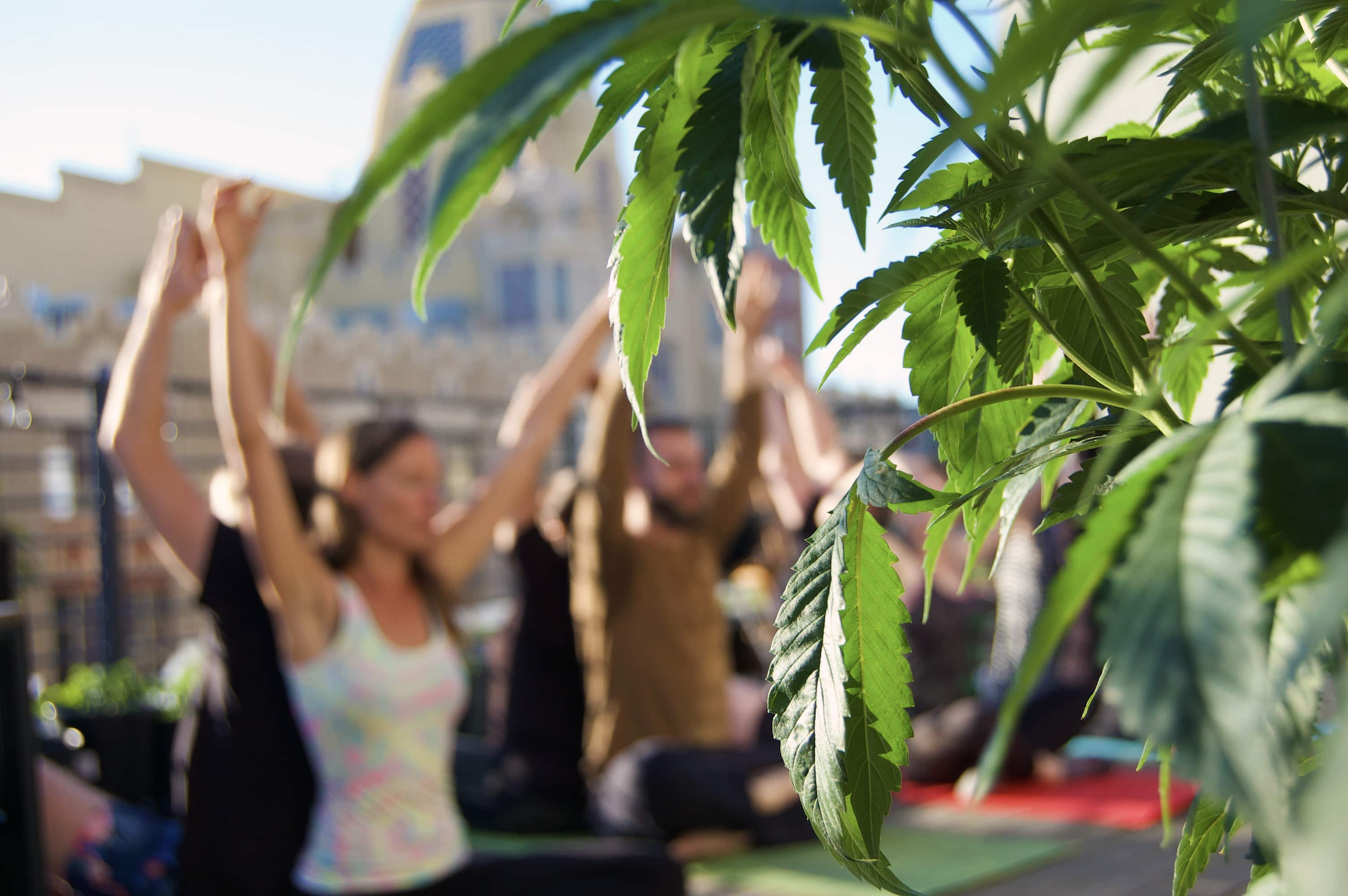 Ganja Yoga with Dee