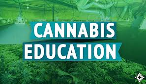 Cannabis Education Event