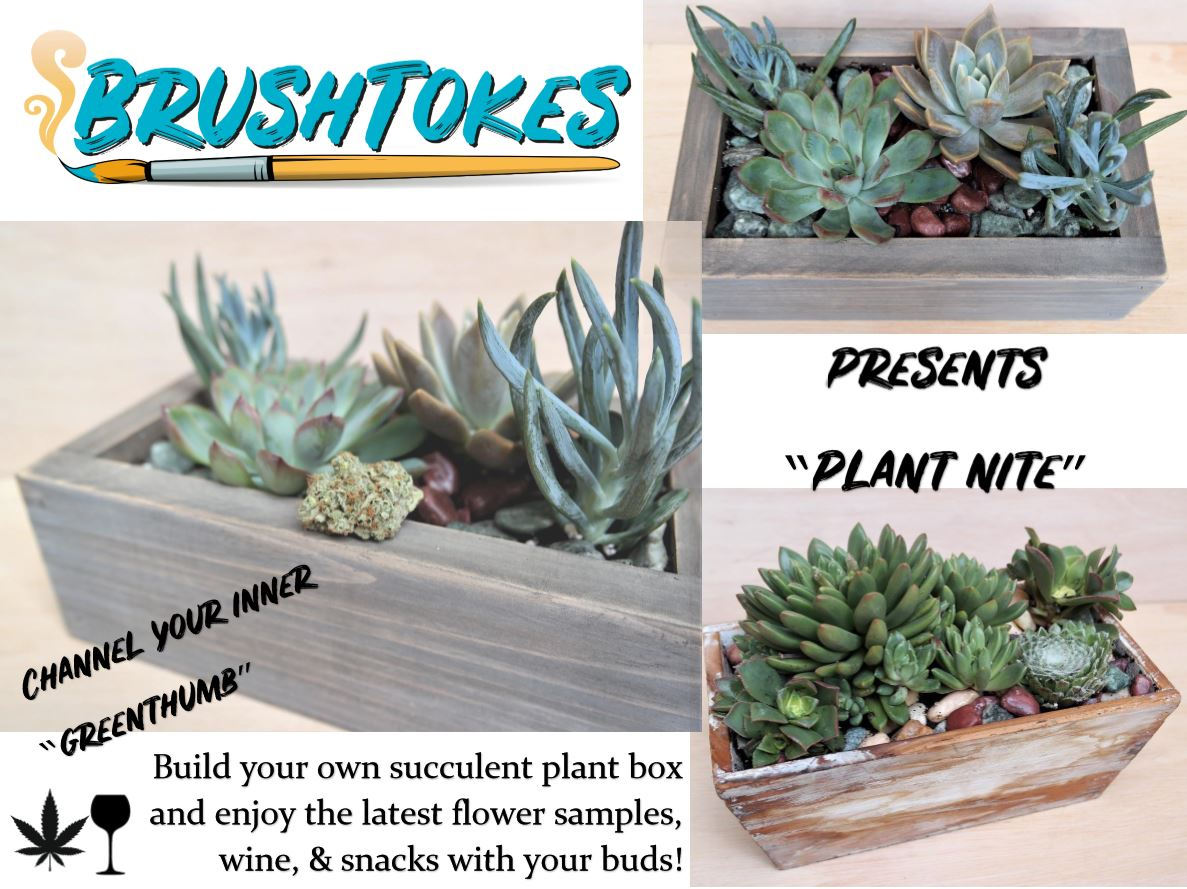 BrushTokes 420 Friendly Plant Night - BUILD YOUR OWN SUCCULENT GARDEN