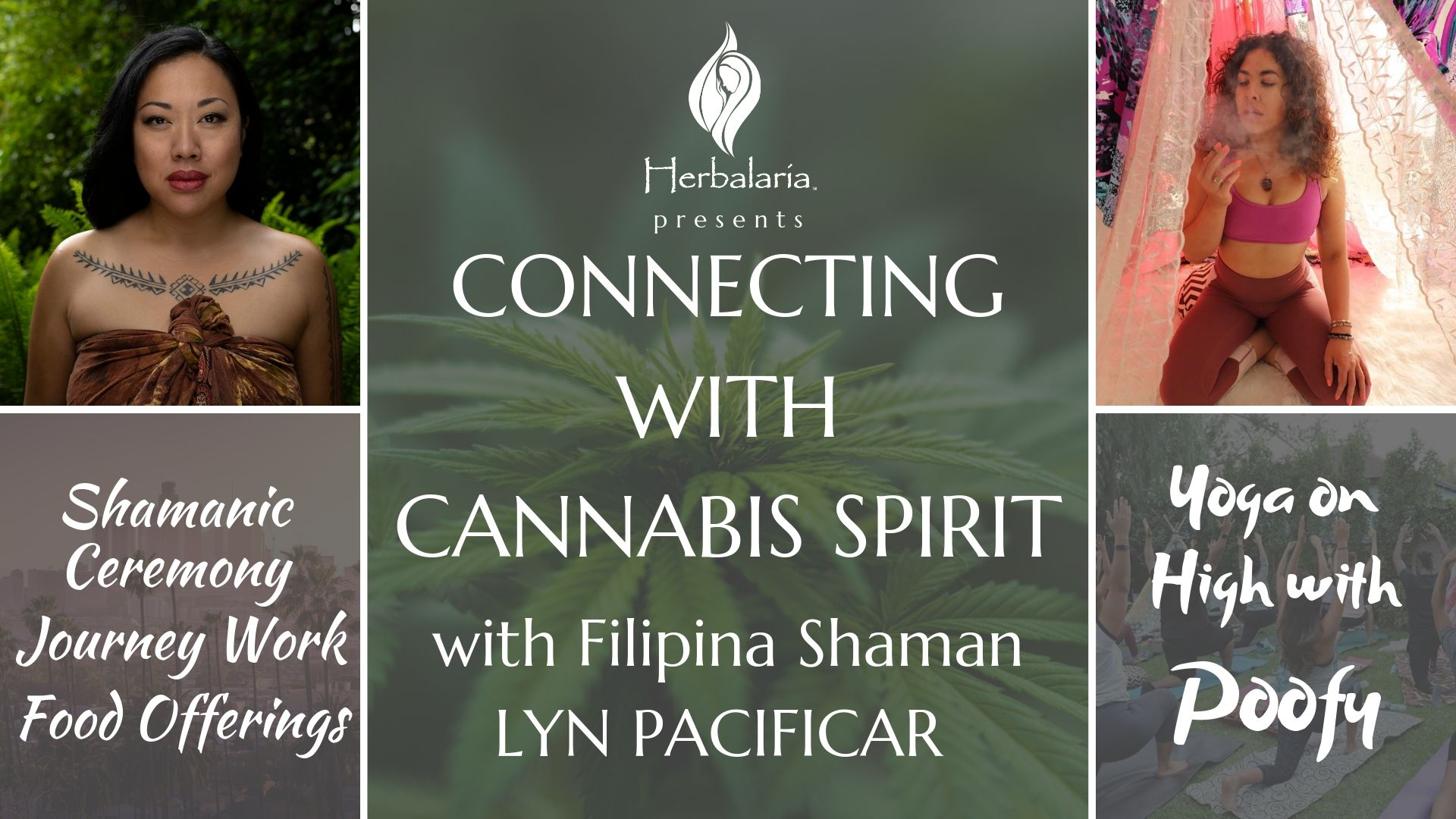Connecting with Cannabis Spirit