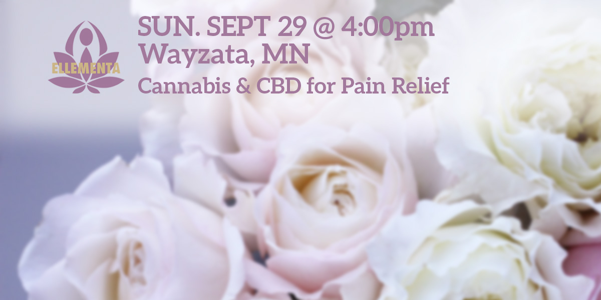 Ellementa Wayzata: CBD & Mindfulness for Pain Relief