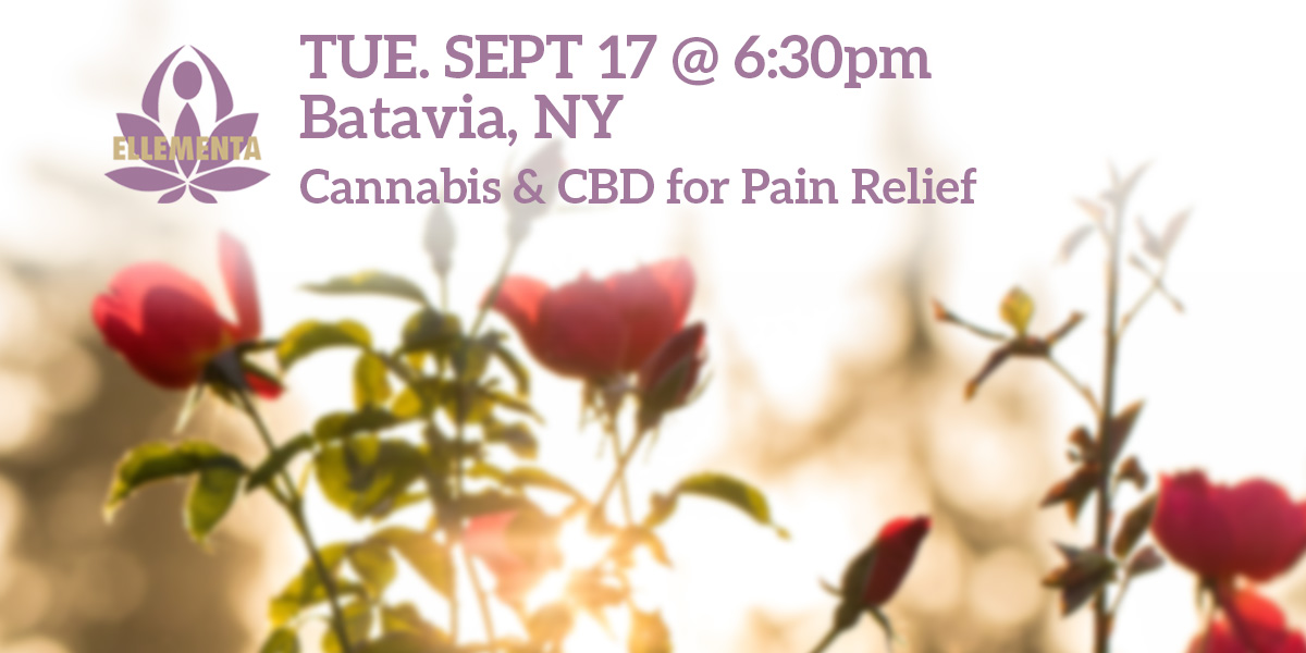 Ellementa Batavia: Cannabis and CBD for Pain Relief