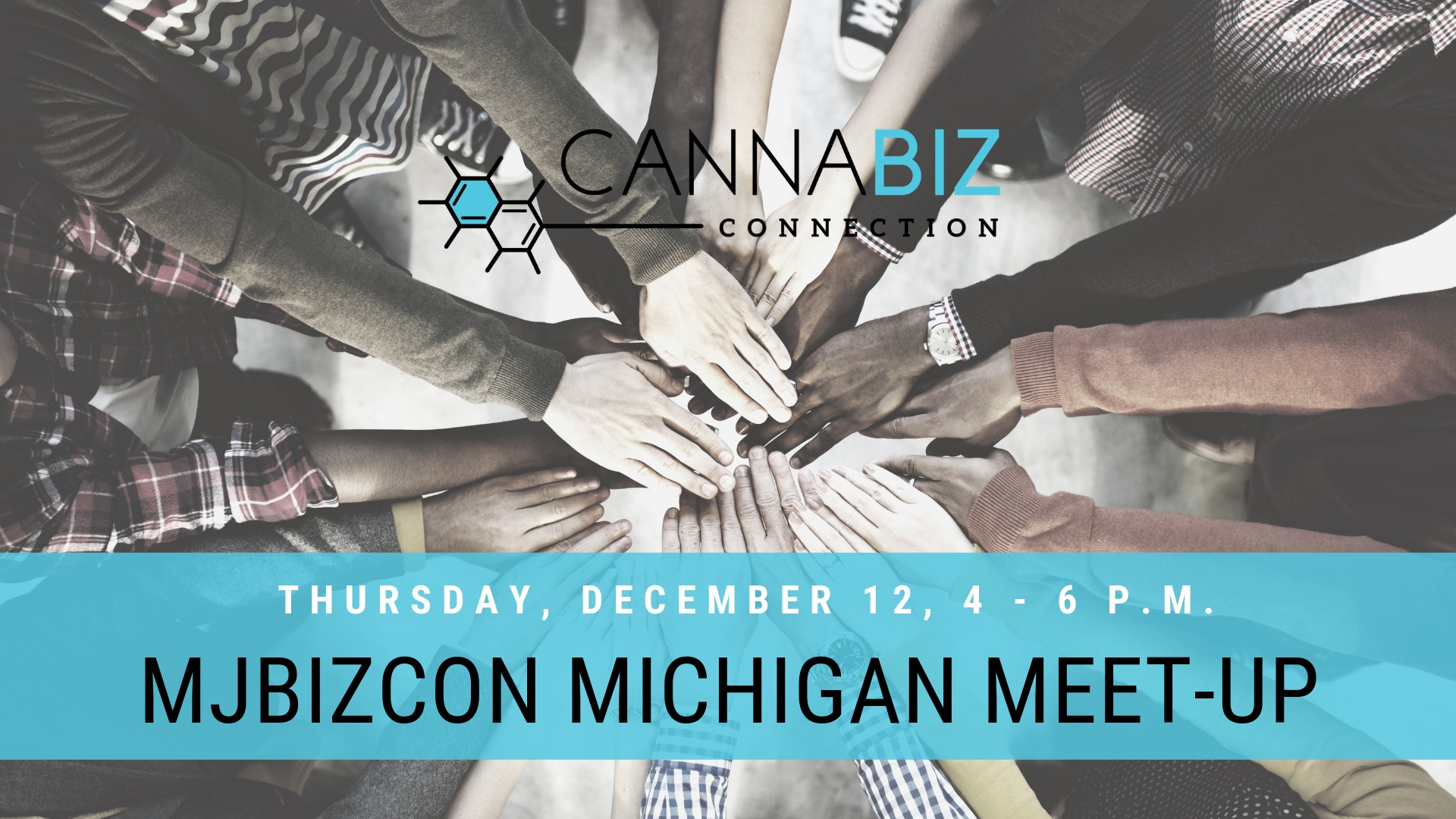 MJBIZCON Michigan Meetup