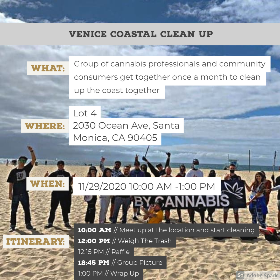 Venice Coastal Clean Up