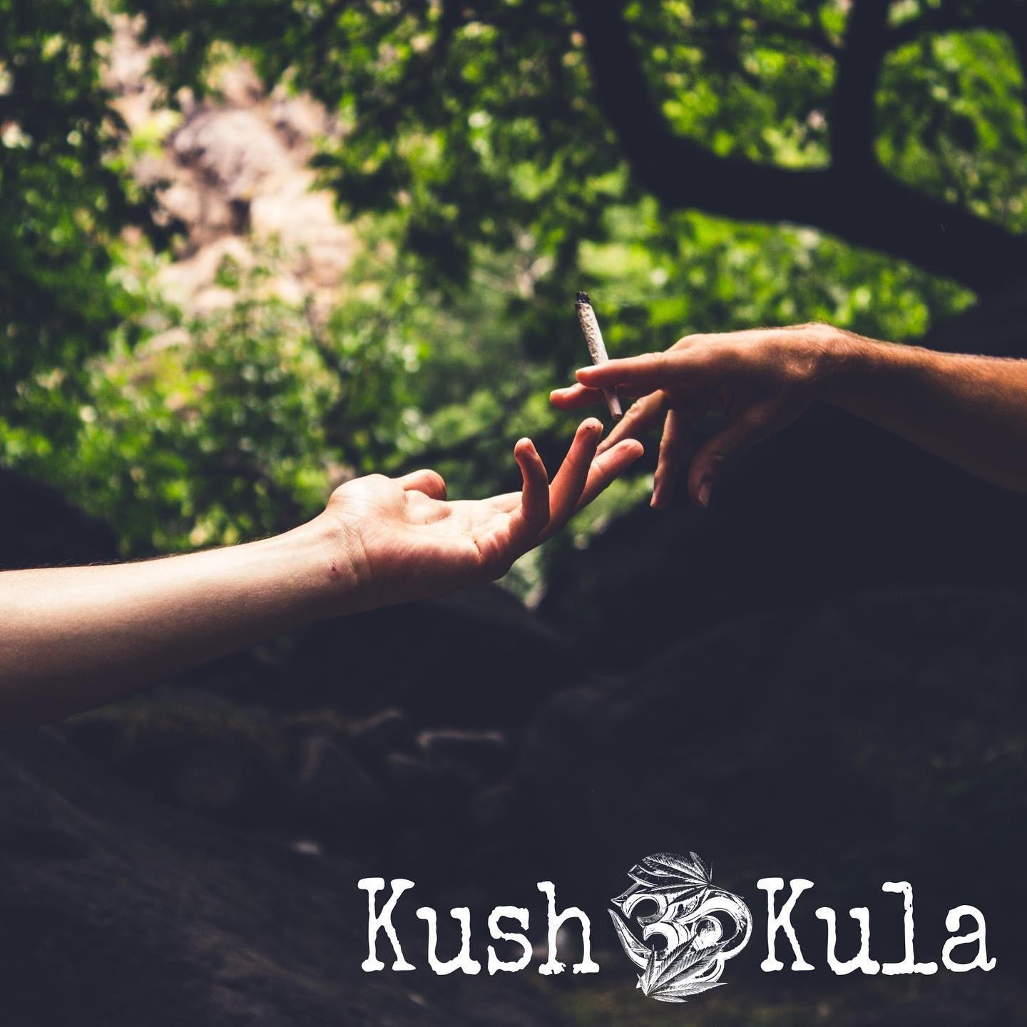 Elevated Yoga and Sound Bath at Kush Kula
