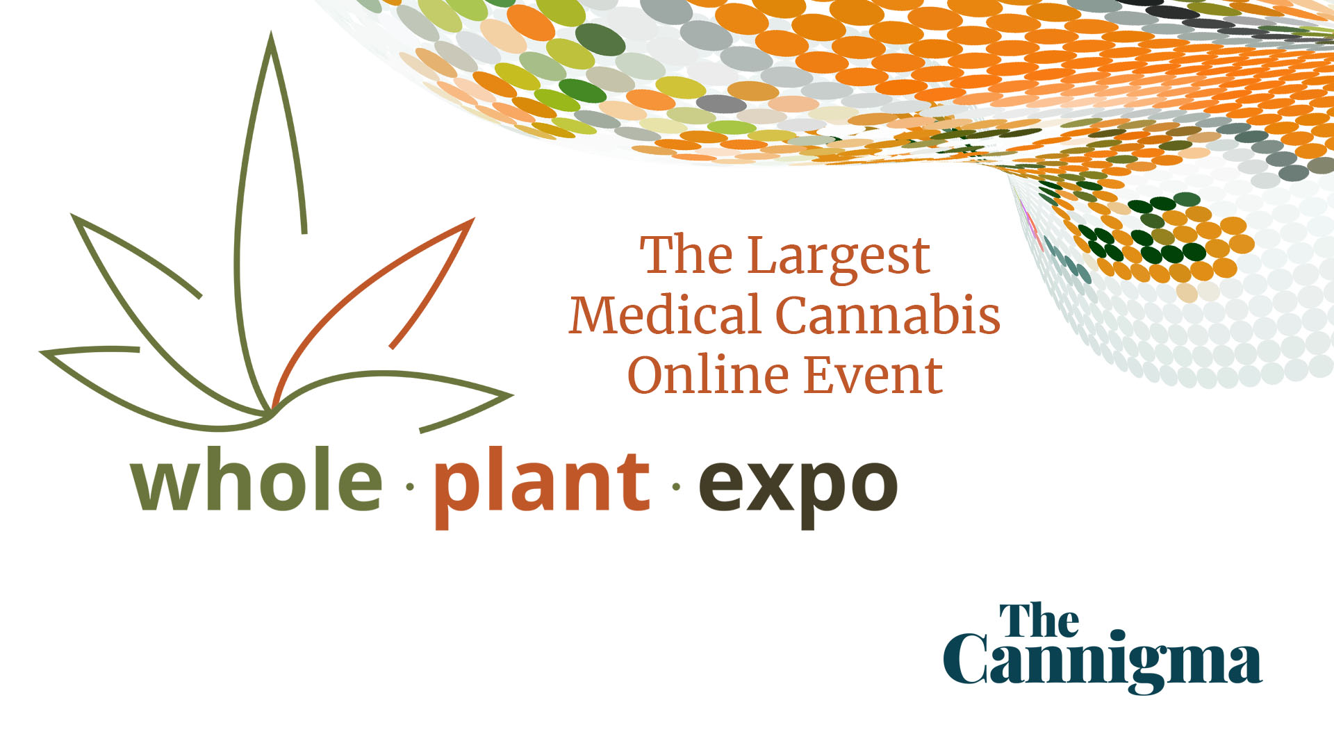 Whole Plant Expo The Cannigma Discount