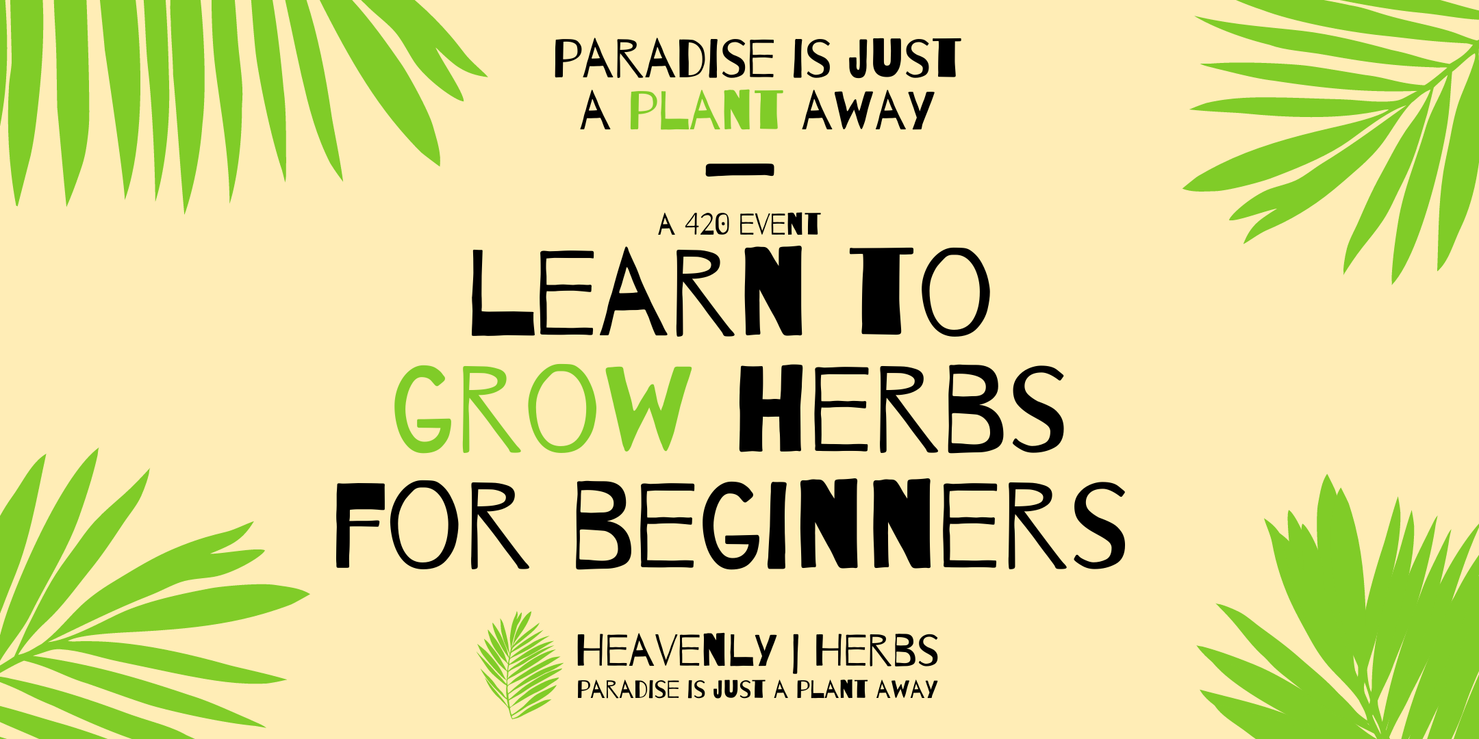 Learn to Grow Herbs for Beginners