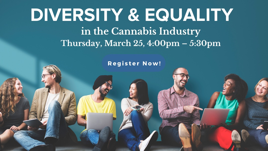 Diversity & Equality panel and speed networking virtual event (Sponsorship)