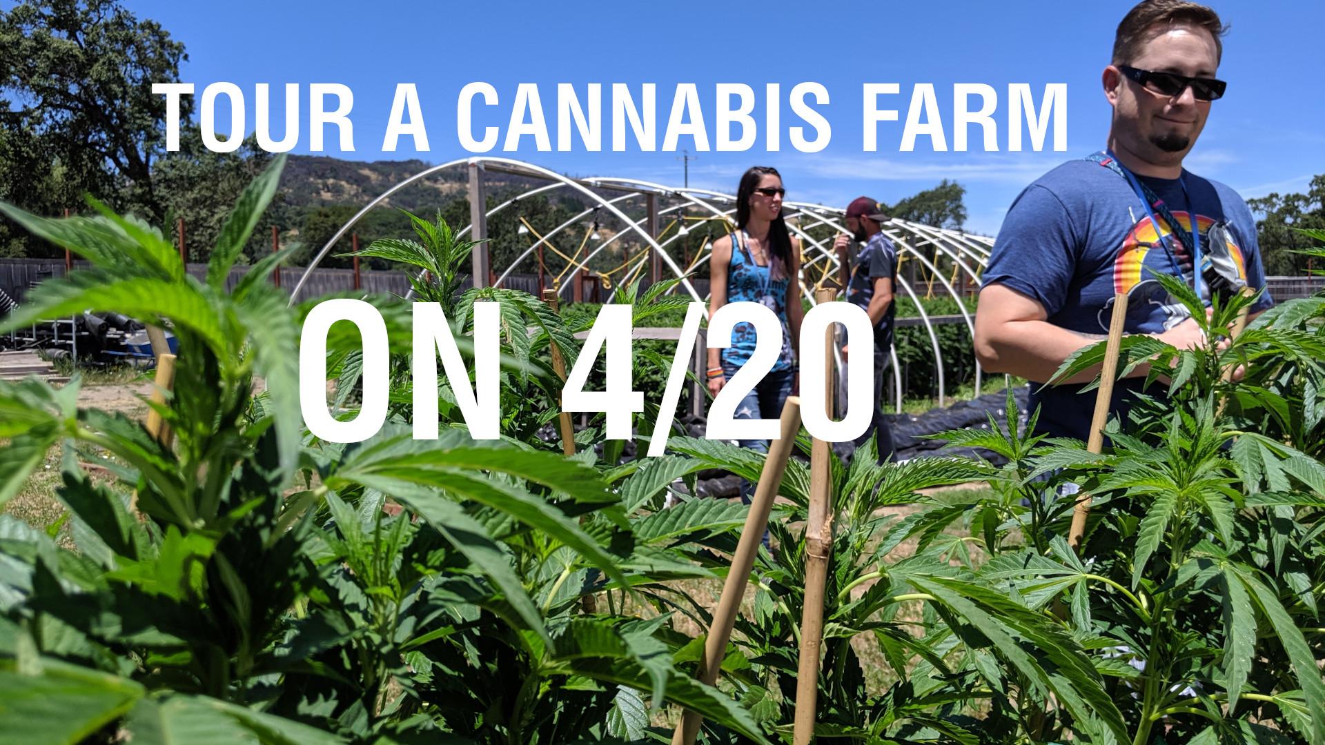Book a Cannabis Farm Tour on 4/20