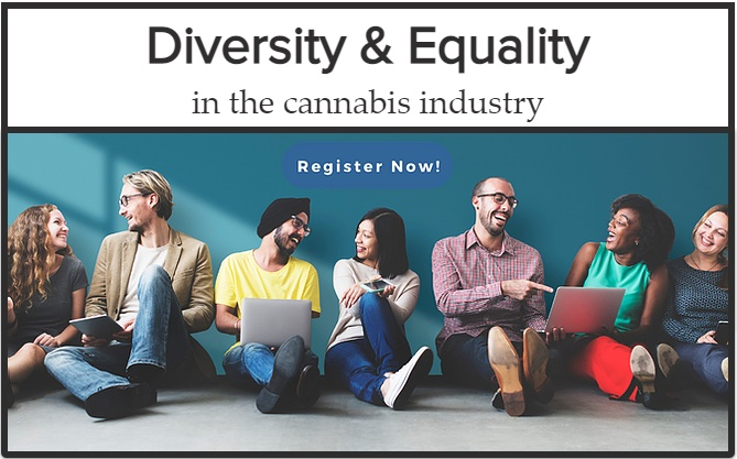 Diversity & Equality panel and speed networking virtual event